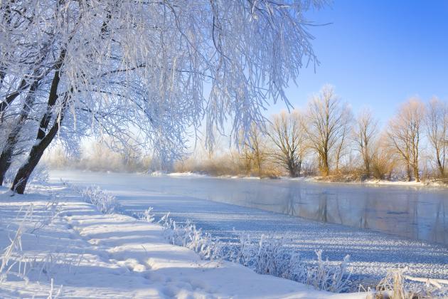 vinterbild hemsida